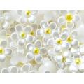 Жемчужные цветы с золотой сердцевиной (12 мм)