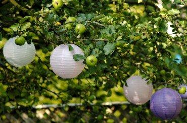 маленькие китайские фонарики украшают свадебную церемонию в саду