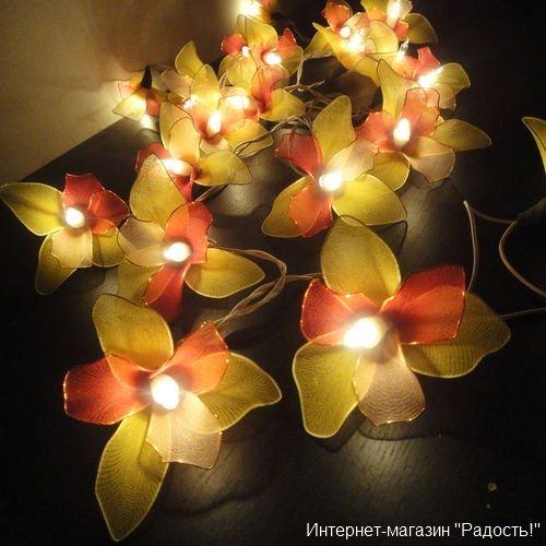 жёлто-красная электрическая гирлянда из орхидей